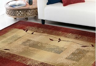 Budget-Friendly Area Rugs