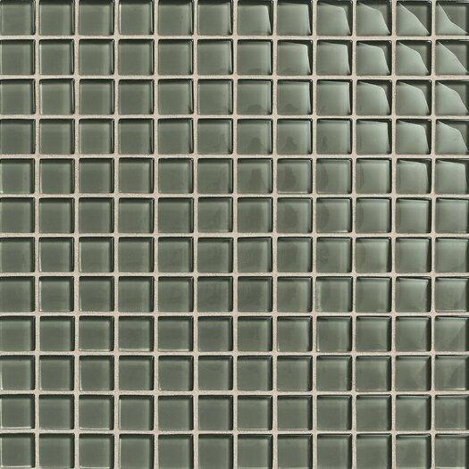 """Daltile Maracas Glass 1"""" x 1"""" Glossy Mosaic Tile in Oak Moss"""