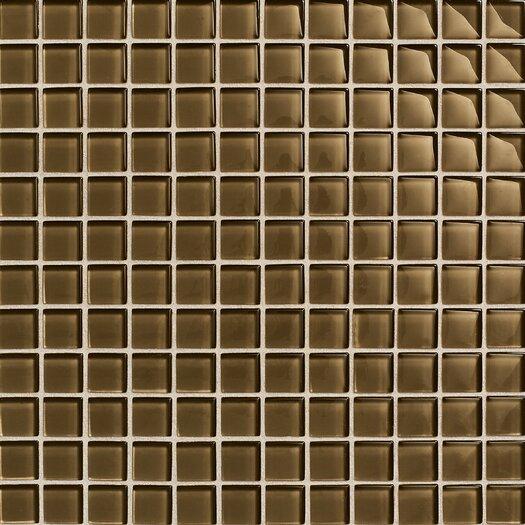 "Daltile Maracas Glass 1"" x 1"" Ceramic Glossy Mosaic Tile in Tortoise"