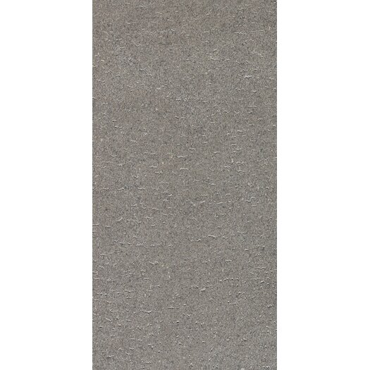 Daltile Magma Porcelain Unpolished Field Tile in Flat Element