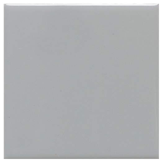 "Daltile Modern Dimensions 4"" x 2"" Plain Ceramic Mosaic Tile in Desert Gray"
