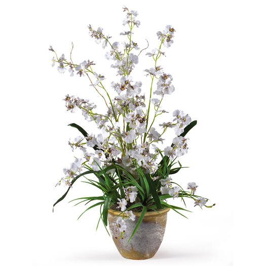 Nearly Natural Dancing Lady Orchid Arrangement in White