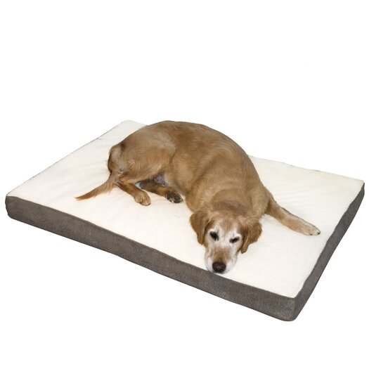 Happy Hounds Oscar Orthopedic Dog Pillow