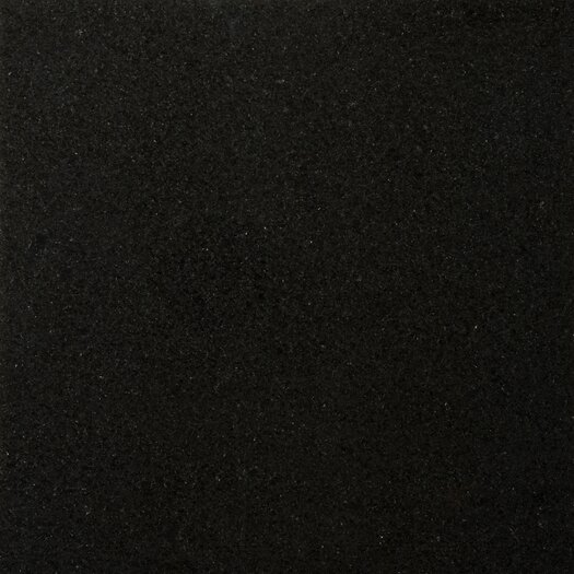 "Emser Tile Natural Stone 18"" x 18"" Granite Tile in Absolute Black"