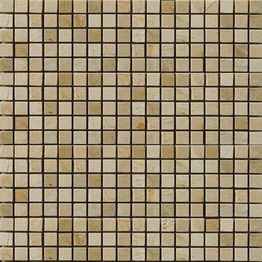 "Emser Tile Natural Stone 1/2"" x 1/2"" Polished Marble Mosaic in Crema Marfil/Emperador Light"