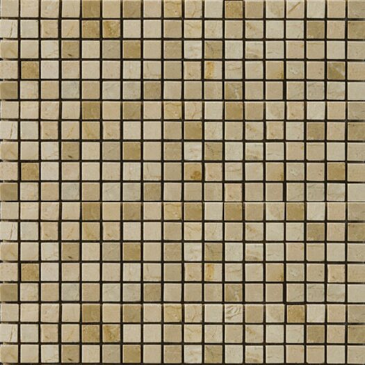 "Emser Tile Natural Stone 1/2"" x 1/2"" Marble Polished Mosaic in Crema Marfil/Emperador Light"