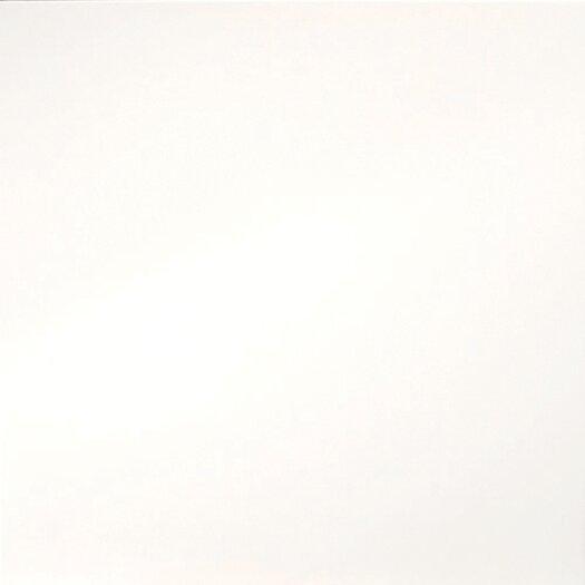 """Emser Tile Times Square 24"""" x 24"""" Unglazed / Polished Floor Tile in White"""