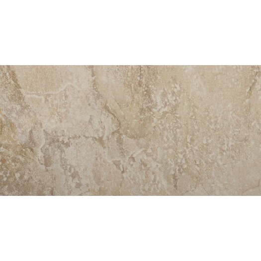 "Emser Tile Bombay 12"" x 24"" Glazed Porcelain Tile in Arcot"