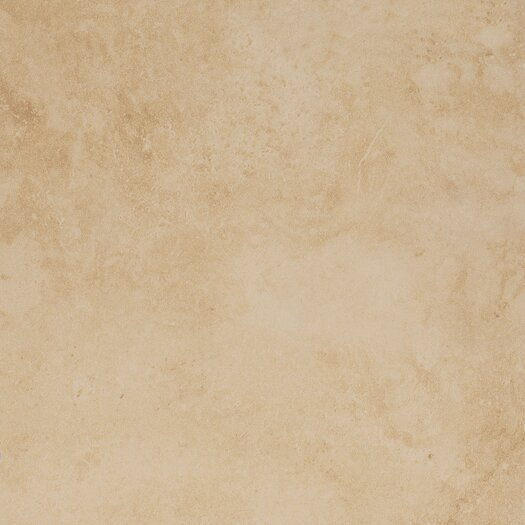 "Emser Tile Coliseum 20"" x 20"" Glazed Porcelain Tile in Ephesus"