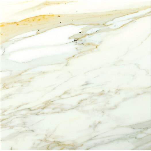 "Emser Tile Calacata Oro 12"" x 12"" Honed Marble Tile in Calacata"