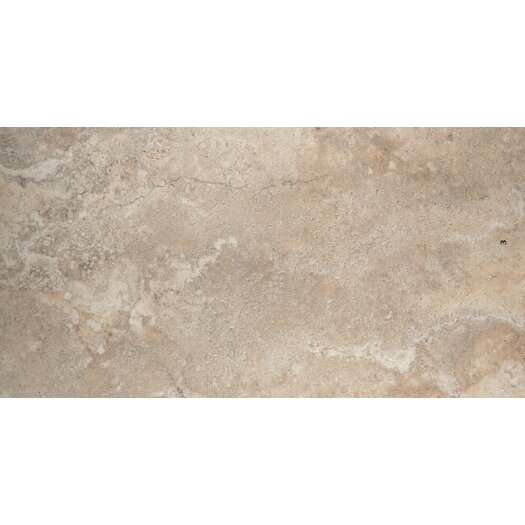"Emser Tile Primavera 12"" x 24"" Glazed Porcelain Tile in Flora"