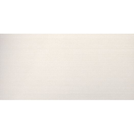 "Emser Tile Spectrum 12"" x 24"" Glazed Porcelain Tile in Acamar"