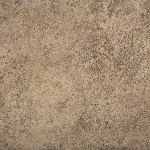 """Emser Tile Toledo 17"""" x 17"""" Glazed Ceramic Tile in Noce"""