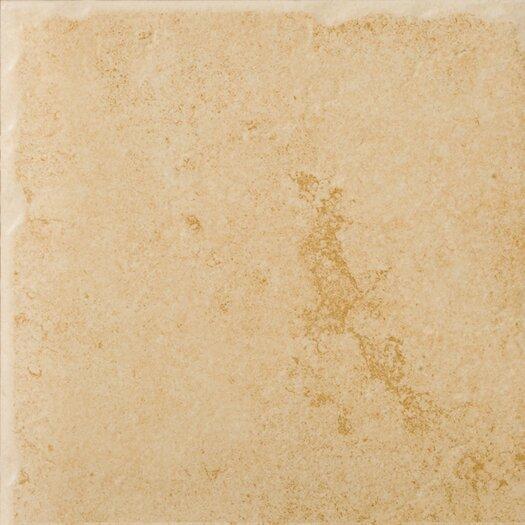 """Emser Tile Genoa 16"""" x 16"""" Glazed Porcelain Floor Tile in Albergo"""