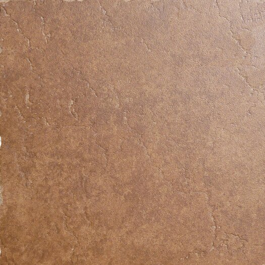 "Emser Tile Genoa 20"" x 20"" Glazed Porcelain Floor Tile in Sauli"