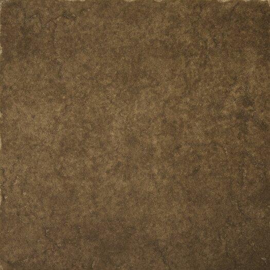 """Emser Tile Genoa 20"""" x 20"""" Glazed Porcelain Floor Tile in Pinelli"""