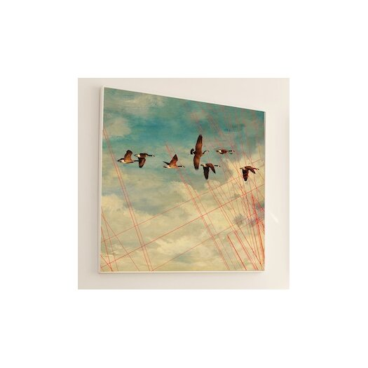 JORDAN CARLYLE Abstract Birds in Flight Framed Graphic Art