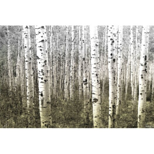 Aspen Highlands by Parvez Taj Canvas Art