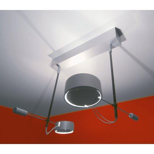 Absolut Lighting Absolut 2 Light Ceiling Light