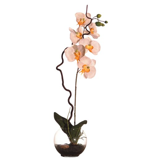 Vickerman Co. Floral Orchid in Soil