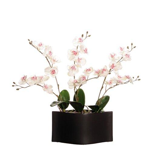 Vickerman Co. Floral Orchid