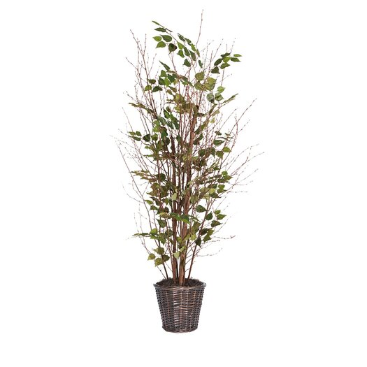 Vickerman Co. Natural Birch Tree in Basket