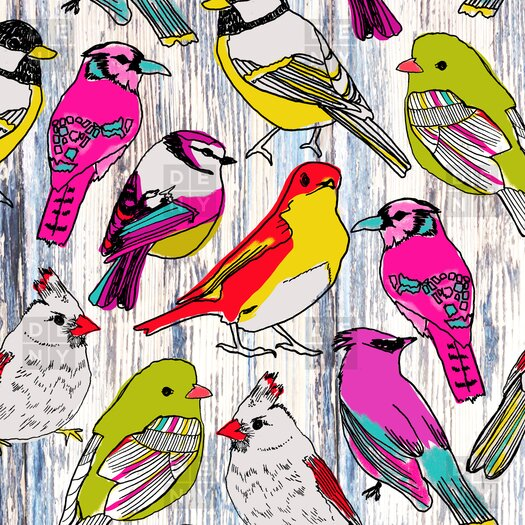 DENY Designs Mary Beth Freet Couture Home Birds Woven Polyesterrr Shower Curtain