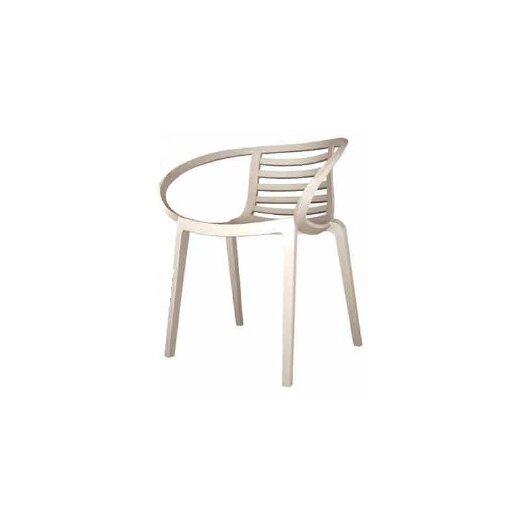 Papatya Mambo Arm Chair