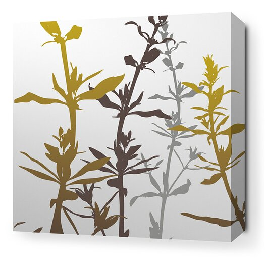 Inhabit Morning Glory Wildflower Stretched Graphic Art on Canvas in Silver and Olive