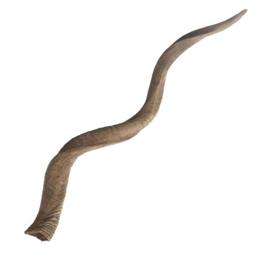 Lazy Susan USA Decorative Curved Kudu Horn