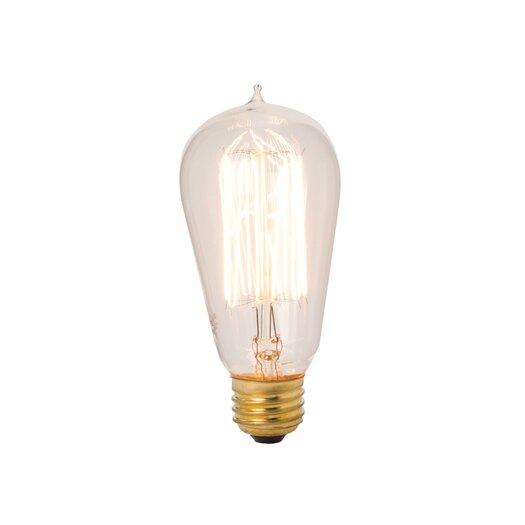 Lazy Susan USA 40W Light Bulb