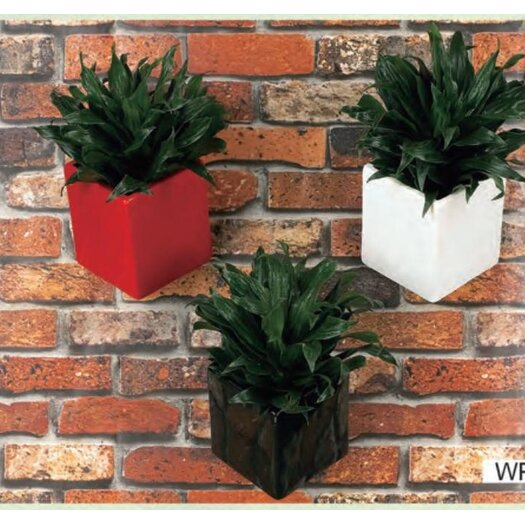 Arcadia Garden Products Cube Wall Planter