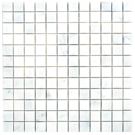 Faber Carrara Extra Marble Mosaic Polished Tile in White