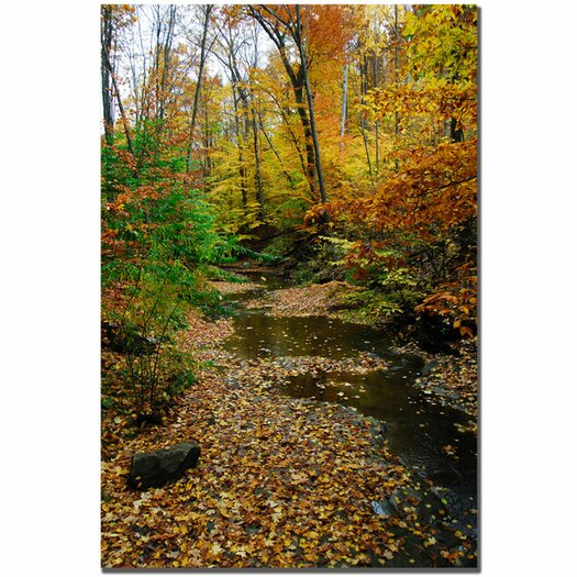 Trademark Fine Art 'Autumn Stream' by Kurt Shaffer Photographic Print on Canvas