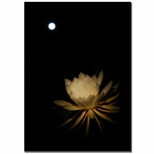 Trademark Fine Art 'Full Moon Bloom' by Kurt Shaffer Photographic Print on Canvas