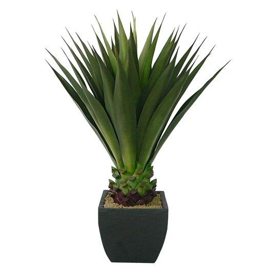 Laura Ashley Home Realistic Giant Aloe Floor Plant in Pot