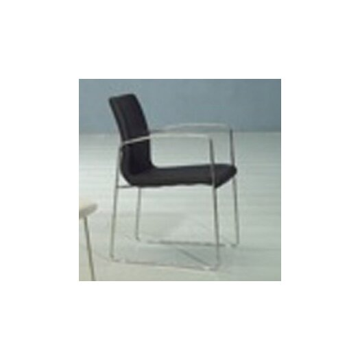 Whiteline Imports Marco Dining Armchair