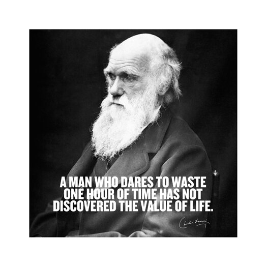iCanvas Charles Darwin Quote Canvas Wall Art