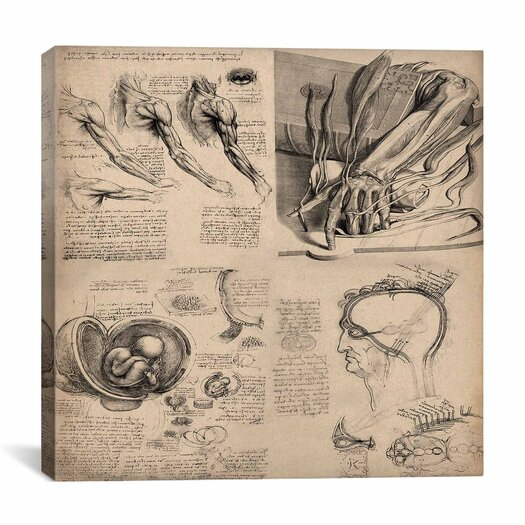 "iCanvas ""Human Body Anatomy Collage"" Canvas Wall Art by Leonardo da Vinci"