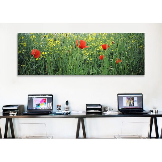 iCanvas Panoramic Baden-Wurttemberg, Germany Photographic Print on Canvas