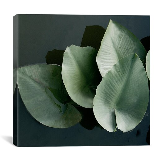 "iCanvas ""Lilies in a Grouping"" Canvas Wall Art by Harold Silverman - Foilage and Greenery"