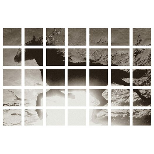iCanvas Modern Art Swimming Horse Graphic Art on Canvas