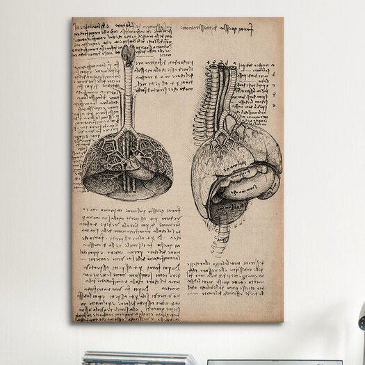 iCanvasArt 'Sketchbook Studies of Human Organs' by Leonardo da Vinci Painting Print on Canvas