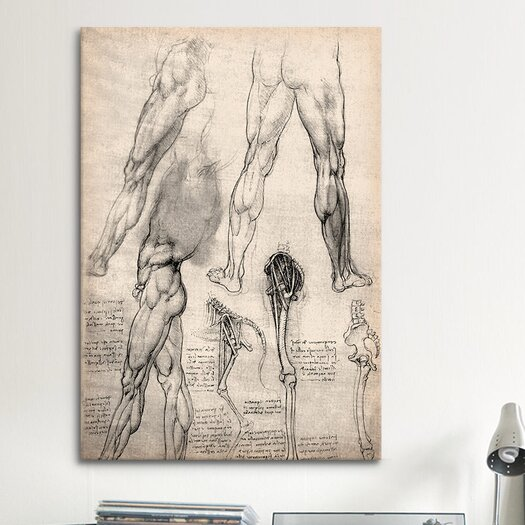 iCanvas 'Sketchbook Studies of Human Legs' by Leonardo da Vinci Painting Print on Canvas