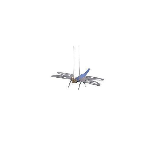 Tech Lighting Dragonfly 1 Light Kable Lite Functional Art Light