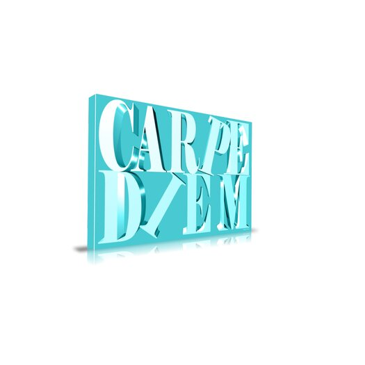 "Maxwell Dickson ""Carpe Diem"" Textual Art on Canvas"
