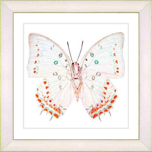 "Studio Works Modern ""White Butterfly"" by Zhee Singer Framed Graphic Art"