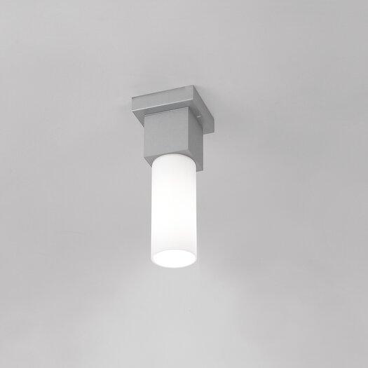 Artemide Dupla Outdoor Ceiling Light