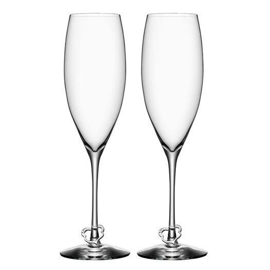 Orrefors Champagne Flute