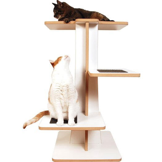 "Square Cat Habitat 36"" Acacia Cat Tree"